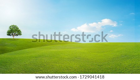 panoramic landscape, lonely tree among green fields, blue sky and white clouds in the background Royalty-Free Stock Photo #1729041418