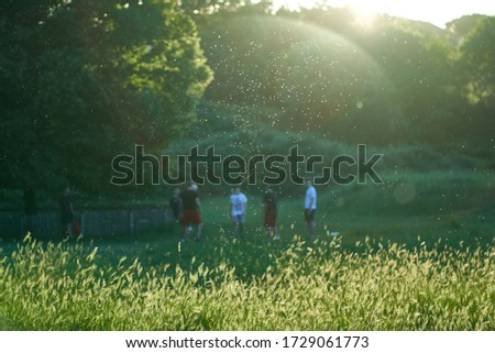 Allergies or Coronavirus Spread: Visible Cloud of Pollen and Particles at Sunset in Front of a Group of Teenagers Playing in a Public Park. Flare Gives the Impression of a Sphere Lingering Over Them Royalty-Free Stock Photo #1729061773