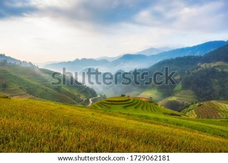 Terraced rice paddy field landscape of Mu Cang Chai, Yenbai, Northern Vietnam Royalty-Free Stock Photo #1729062181
