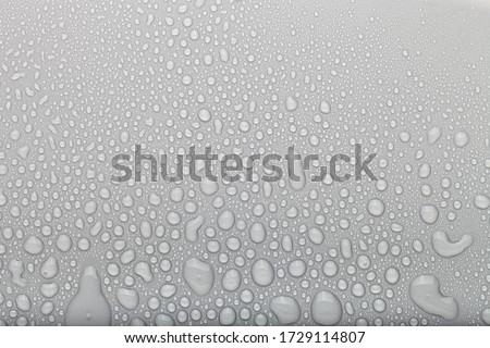 Drops of water on a color background. Selective focus. Gray. Royalty-Free Stock Photo #1729114807