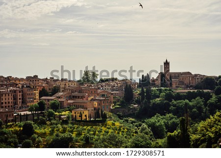 Ancient town with lush woods in Tuscany #1729308571