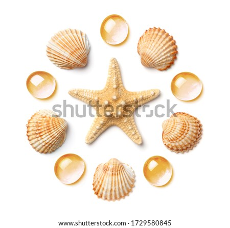 Pattern in the form of a circle of sea shells and starfish, isolated on a white background. Flat lay, top view Royalty-Free Stock Photo #1729580845