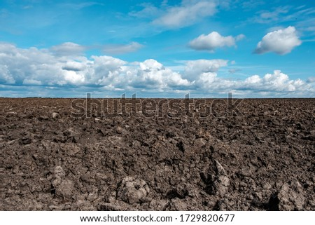 arable land with plowed soil autumn plowing. landscape of a plowed field with clouds on the horizon #1729820677