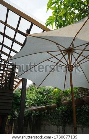 Outdoor Parasol umbrella under big green tree decorated in patio terrace lounge #1730077135