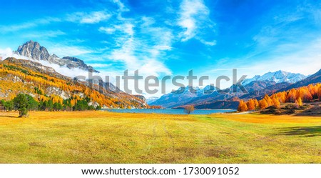 Charming autumn scene in Swiss Alps and views of Sils Lake (Silsersee). Colorful autumn scene of Swiss Alps. Location: Maloya, Engadine region, Grisons canton, Switzerland, Europe. #1730091052