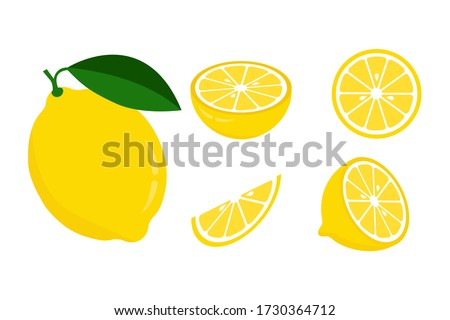 Icon set lemon, vector illustration on white background #1730364712