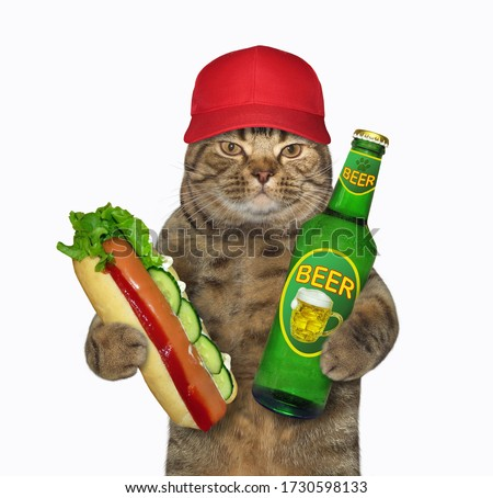 The beige cat in a red cap is holding a bottle of light beer and a big hot dog. White background. Isolated.