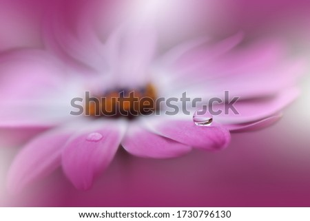 Beautiful Nature Background.Floral Art Design.Abstract Macro Photography.Gerbera Daisy Flower.Pastel Flowers.Violet Background.Creative Artistic Wallpaper.Wedding Invitation.Celebration,love.Close up.