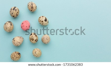 Top view quail egg collection. Outstanding, choice and difference concept. Being unique and individuality.