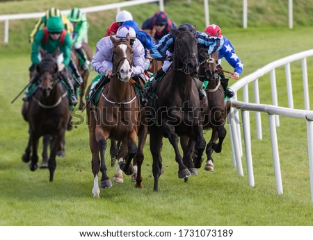 horse racing action, Race horses and jockeys battling for first position on the race track #1731073189