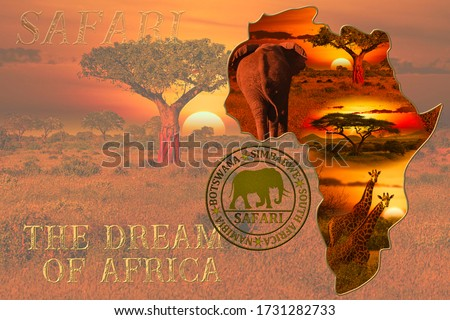 Beautiful pictures of Africa sunset and sunrise with elephants and giraffes