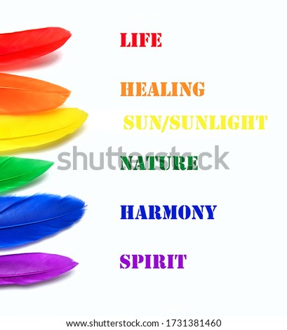 Meanings of LGBT flag colors. LGBT flag made of rainbow feathers on a white background. Copy space for text or image.background lgbt