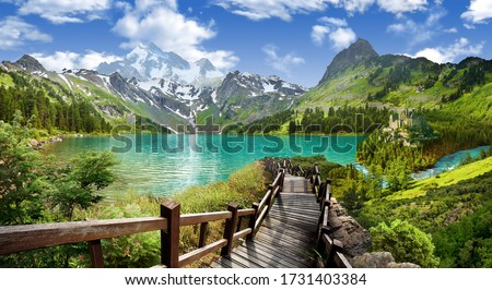 Panoramic view of the lake in the mountains. Royalty-Free Stock Photo #1731403384
