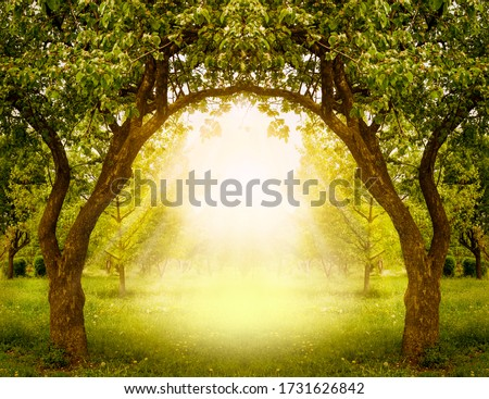 Fantasy apple trees garden with natural arch entrance and sun rays, magical door gates in fabulous green forest, environmental eco background with empty copy space, mysterious summer nature backdrop Royalty-Free Stock Photo #1731626842