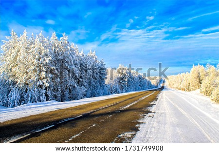 Winter snow nature road landscape. Road in winter snow forest. Snowy winter road view #1731749908