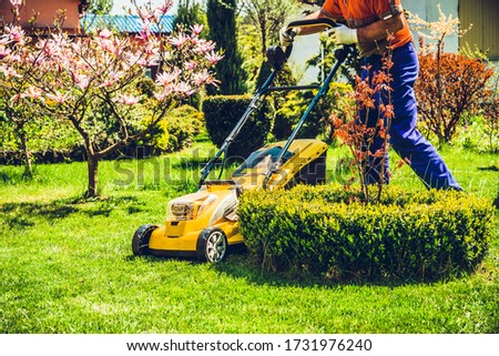 Mowing the grass. A man mows the grass with an electric mower. The concept of working in the garden and caring for the beauty of the garden. The gardener mows the grass with a battery mower.  #1731976240