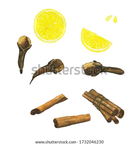 Cinnamon, clove spice and lemon fruit collection isolated on white background. Watercolor hand drawing illustration for healthy food design, organic spice, mulled wine. Clip art.