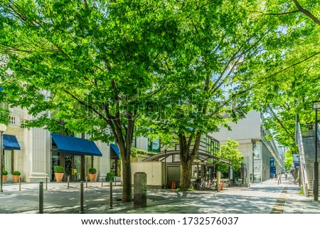 Omotesando, the most fashionable street in Tokyo, Japan Royalty-Free Stock Photo #1732576037