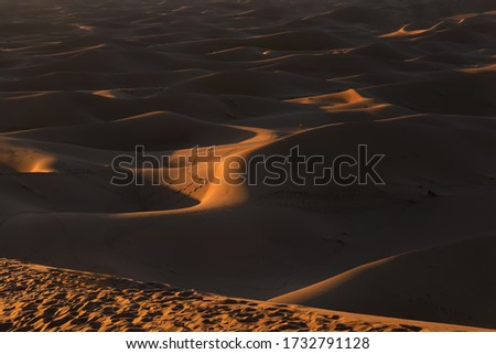 Sunset over Erg Chigaga, Morocco. Erg Chigaga (or Chegaga) is one of two major Saharan ergs in Morocco. This dunes are located in the Souss-Massa-Draa area, 98 km south of the town of Zagora Royalty-Free Stock Photo #1732791128