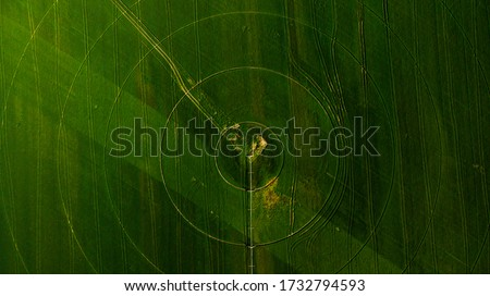 Agriculture aerial view with circular crop irrigation