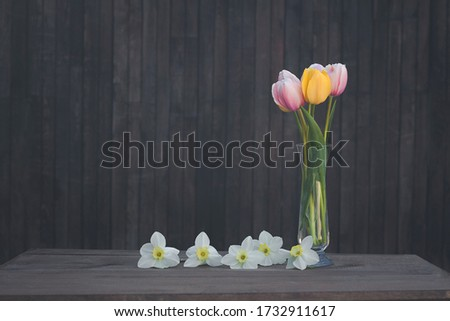 A bouquet of pink and yellow tulips in a glass vase on a dark wooden background with narcissus #1732911617