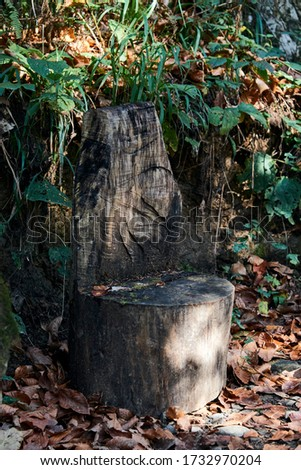 nature and adventure concept - homemade wooden chair in a forest in the mountains #1732970204