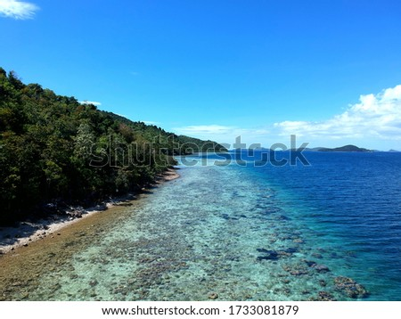 Palawan Islands with green trees beach blue waters and coral reef #1733081879