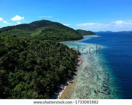 Palawan Islands with green trees beach blue waters and coral reef #1733081882