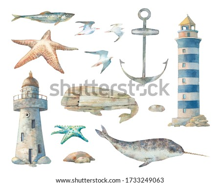 Nautical set: narwhal, sea starfish, anchor, stones, lighthouse. Isolated illustrations on white background