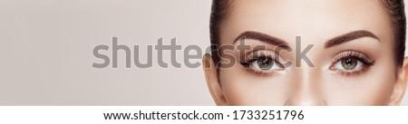 Beautiful Woman with Extreme Long False Eyelashes. Eyelash Extensions. Makeup, Cosmetics. Beauty, Skincare Royalty-Free Stock Photo #1733251796