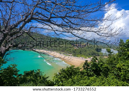 Tropical seascape. Empty beaches, turquoise calm sea, palm trees, coral reef under water - asian tropical paradise. Blue ocean water in a tropical lagoon on jungle covered island #1733276552