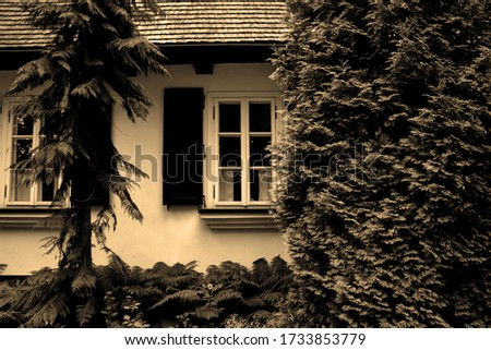 Monochromatic photography in sepia showing a detail of a front facade of a nobleman's manor house from the 19th century in a surrounding park in Poland. #1733853779