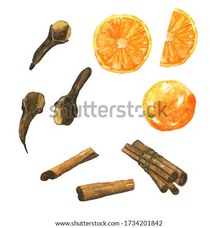 Cinnamon, clove spice and orange fruit collection isolated on white background. Watercolor hand drawing illustration for healthy food design, organic spice, mulled wine. Clip art.