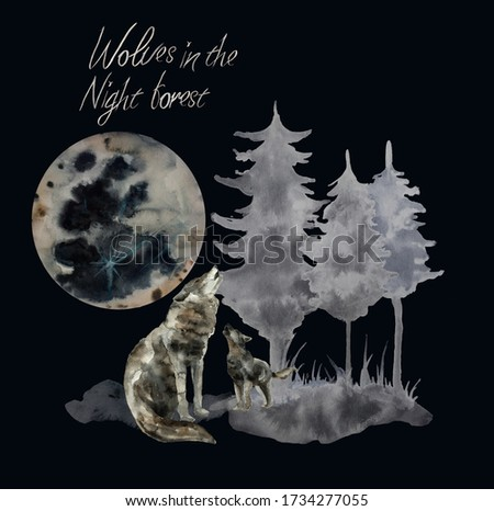 The wolf howls at the full moon in the night forest. Isolated elements on a dark background. Ideal as a clothing print, card, poster or book illustration