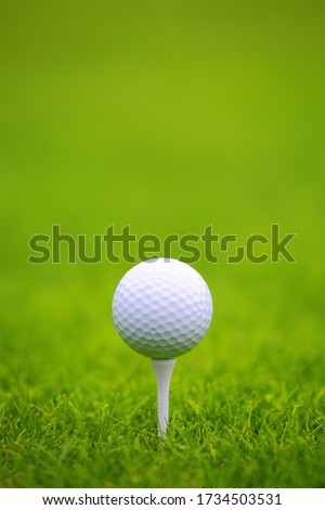 Golf ball on tee on green grass of golf course background, backgrounds for banner foth copy space for text #1734503531