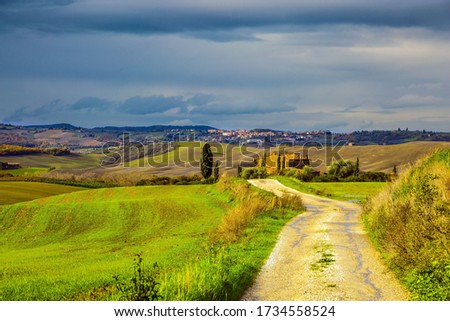 Dirt road runs through the hills. Picturesque hills of the legendary Tuscany. Rural farms. Olive trees on green grassy meadows. The concept of active, rural and photo tourism #1734558524