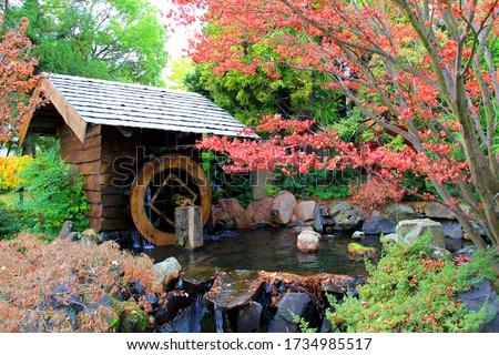 A waterwheel in the Japanese garden at the Royal Tasmanian botanical gardens, Hobart, Tasmania #1734985517