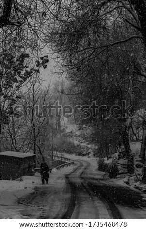 A Shot Of A Landscape Of Kashmir During Winter With Live Snowfall In The Picture.