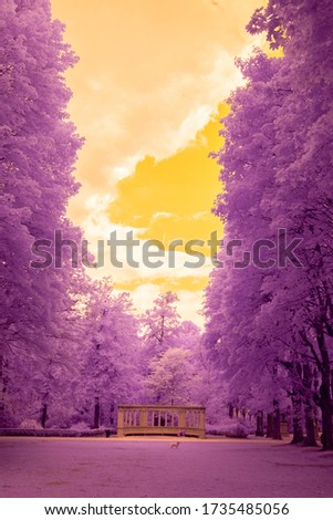 Infrared photography, ir photo, invisible light