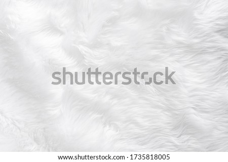 Animal furry white wool sheep background in top view light natural detail, gray fluffy seamless cotton texture. Wrinkled lamb fur fibre skin, rug mat raw material, fleece woolly textile wave  Royalty-Free Stock Photo #1735818005