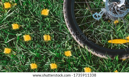 old bicycle wheel vintage background.wheel with silver knitting needles and a black tire with a tread,lies on fresh green grass with yellow flowers in warm sunny weather,put the bicycle on the ground #1735911338