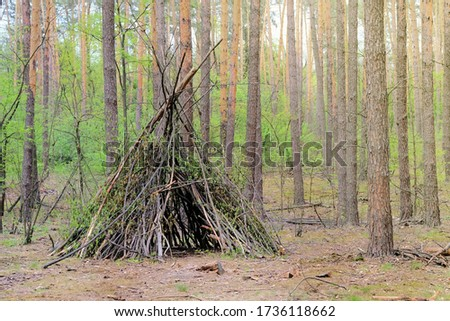 Primitive shelter from all natural materials. Forest hut in summer forest. #1736118662