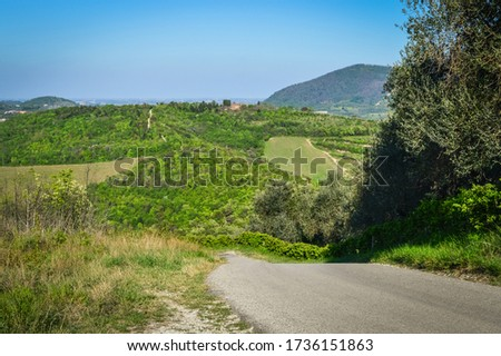 Panoramic view of the fields and vineyards on the Euganean Hills, near Este, Padova, Italy. #1736151863