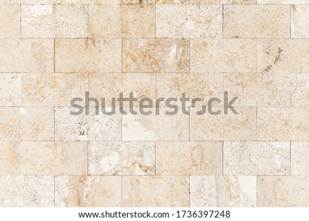 Stone wall made of shelly limestone, it is a highly fossiliferous limestone, composed of a number of fossilized organisms. Background texture, front view Royalty-Free Stock Photo #1736397248