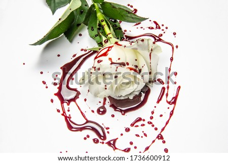 Beautiful and bloody white rose on the white background. Bloody rose - conceptual photo.  White rose with blood. A Bleeding rose