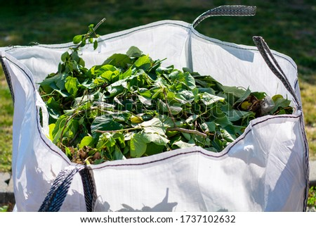Big white bag with organic green garden waste. Local councils collecting green waste to process it into green energy and compost.  Royalty-Free Stock Photo #1737102632