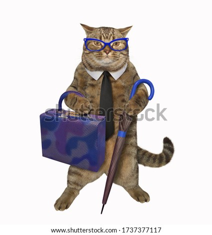 The beige cat in a black tie and glasses with a cane umbrella and a bag looks like a real gentleman. White background. Isolated. #1737377117