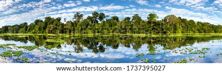 Panoramic view on the Marañon River in the Pacaya Samiria Reserve in Peru, near Iquitos. The river of mirrors.