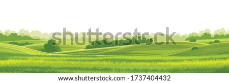 Rural hills  landscape vector background on white. Pasture grass for cows. Meadows and trees. Horizon. Royalty-Free Stock Photo #1737404432