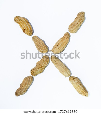 X the letter. alphabet of beans. Beans. concept of healthy eating. photo for your design. horizontal orientation of the sheet